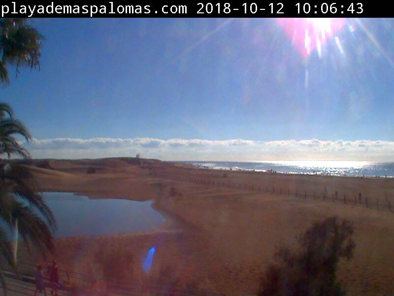 Webcam Charca - Playa de Maspalomas